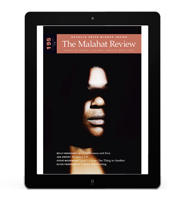 195_tablet_cover